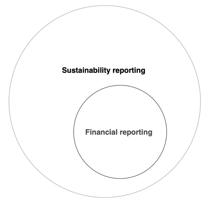Financial and sustainability reporting diagram