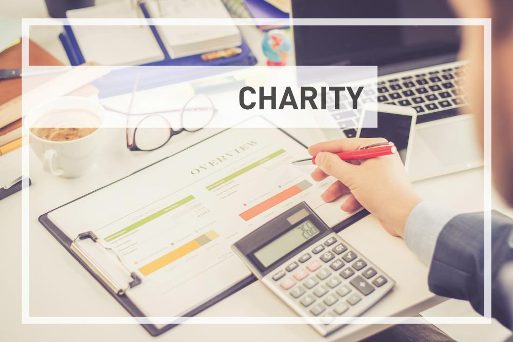 BTCSoftware Charity Accounts Production Template