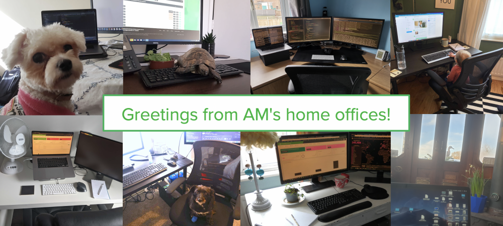 Greetings from AccountancyManager's home offices