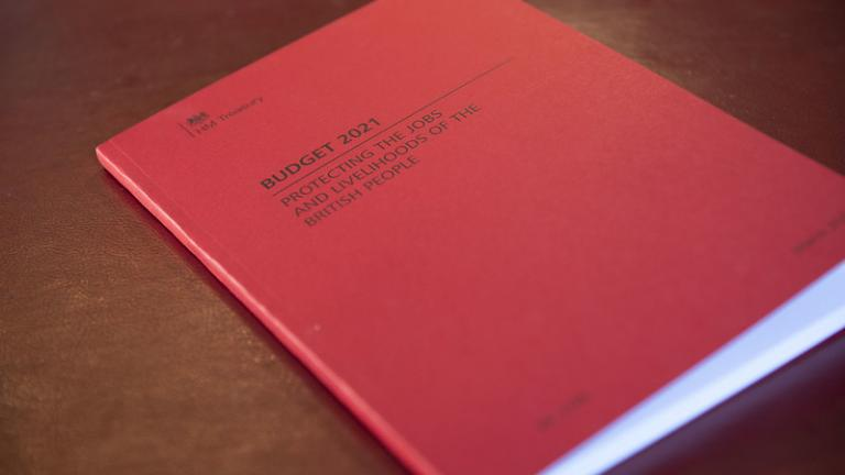 The Budget 2021 document
