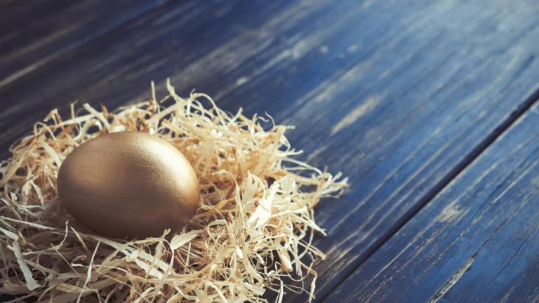 Golden egg in a nest