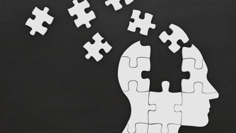 Puzzle head silhouette