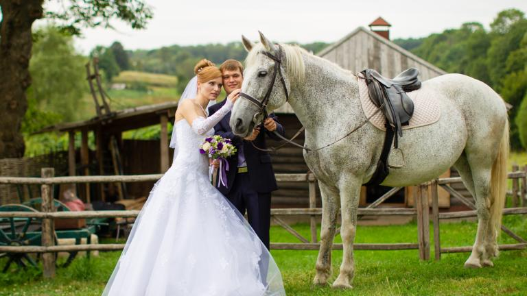 ewly married couple on a farm near a horse