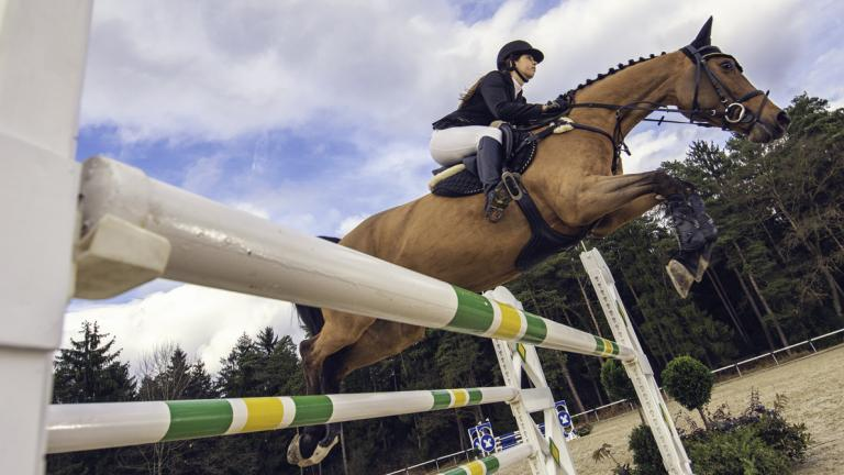 Jump on a horse over the hurdle