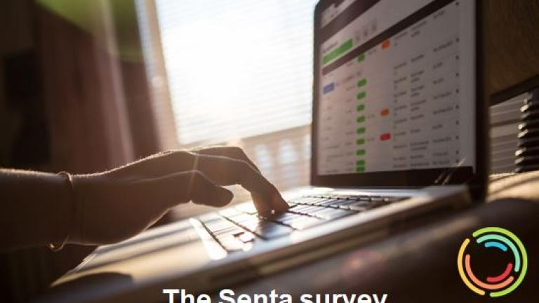 the_senta_survey.jpg