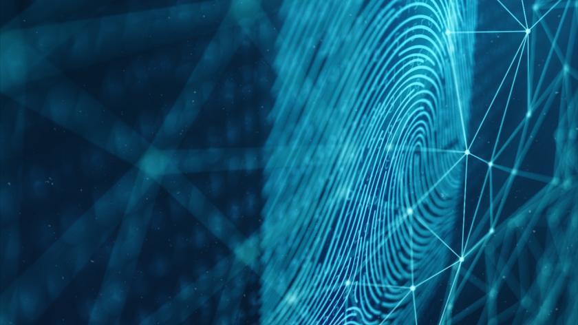 An illustration of a fingerprint scan