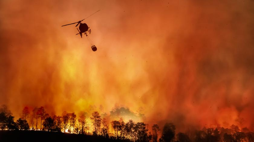 Forest fire, climate change