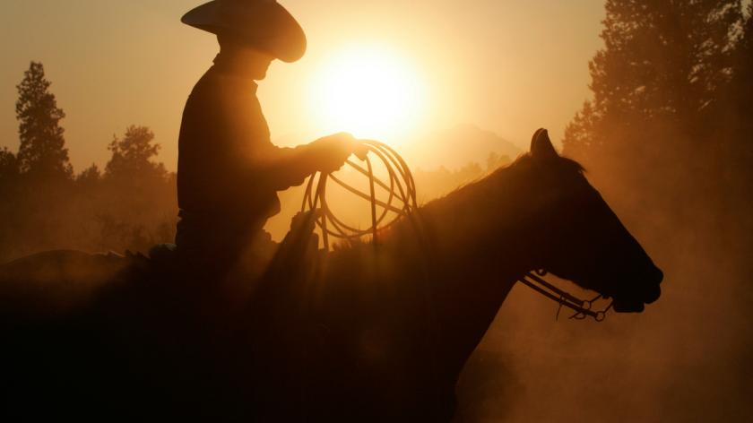 An image of a cowboy