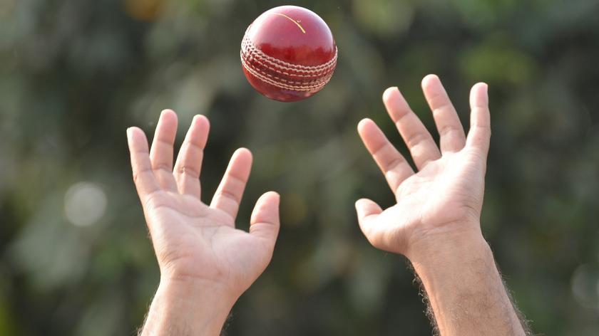Cricket catch