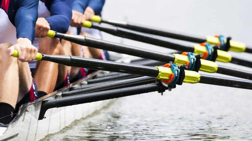 close-up of rowing oars