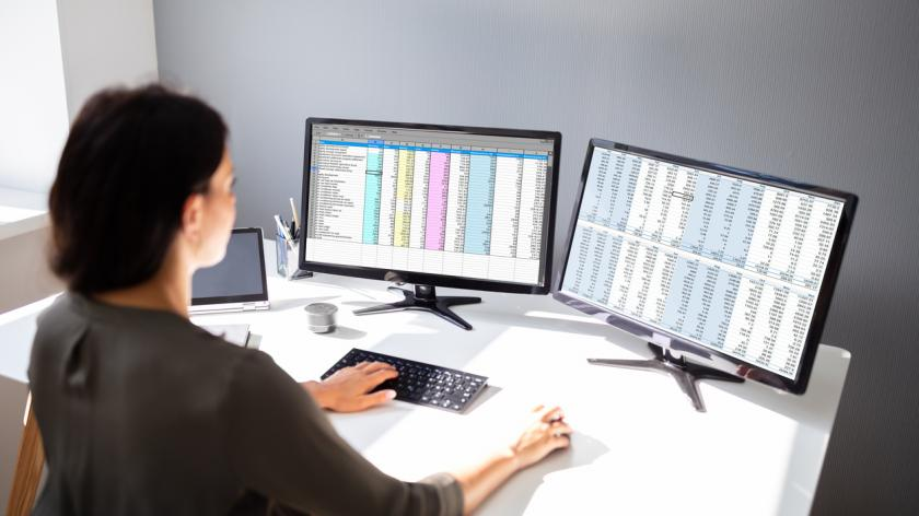 Woman working with spreadsheets