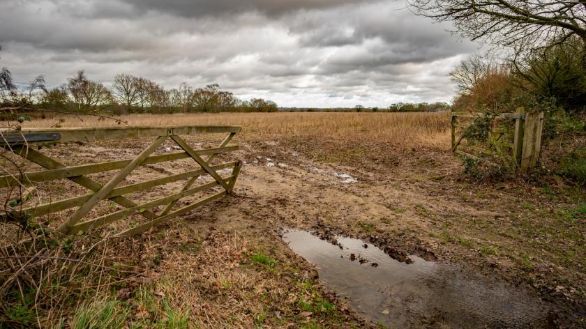 Farmer loses £1.5m sideways loss relief at upper tribunal