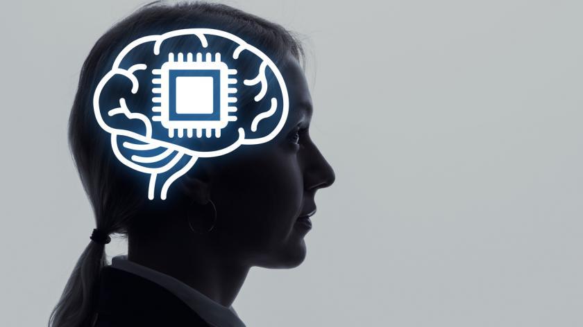 Neural implant concept