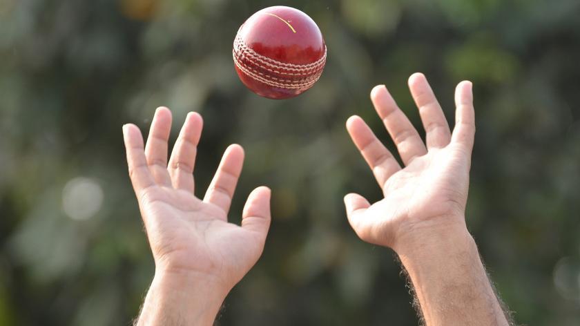 cricket player catching a ball