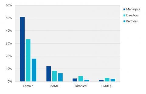 Diversity in accountancy